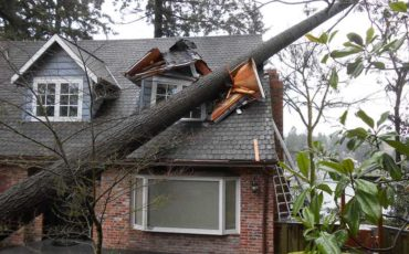 Extreme Weather in Maryland: What To Do After the Storms